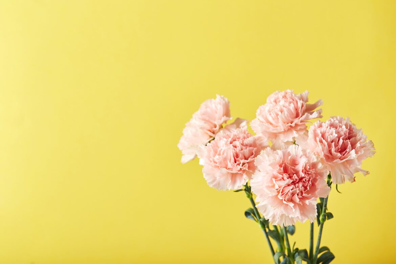 Il servizio online per spedire fiori in Italia